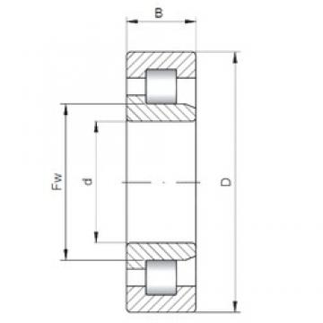 60 mm x 130 mm x 46 mm  ISO NJ2312 cylindrical roller bearings