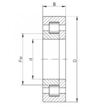 25 mm x 62 mm x 24 mm  ISO NUP2305 cylindrical roller bearings