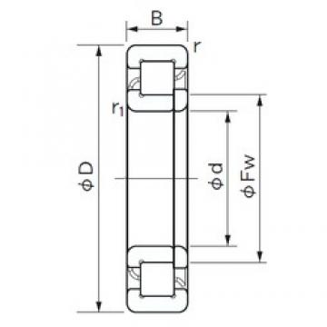 25 mm x 62 mm x 24 mm  NACHI NUP 2305 E cylindrical roller bearings