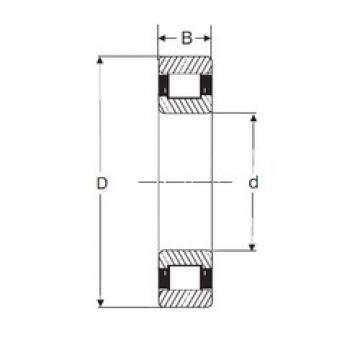 25 mm x 62 mm x 24 mm  SIGMA N 2305 cylindrical roller bearings