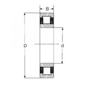 45 mm x 100 mm x 36 mm  SIGMA NU 2309 cylindrical roller bearings