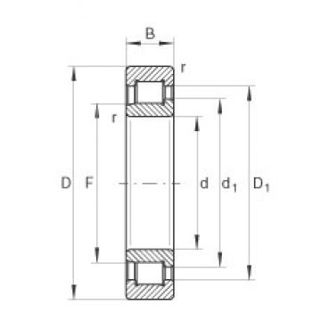 60 mm x 130 mm x 46 mm  INA SL192312 cylindrical roller bearings